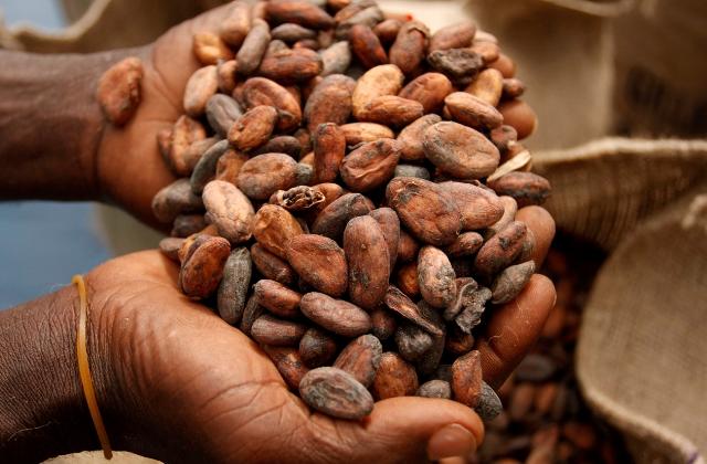 Шоколад майя