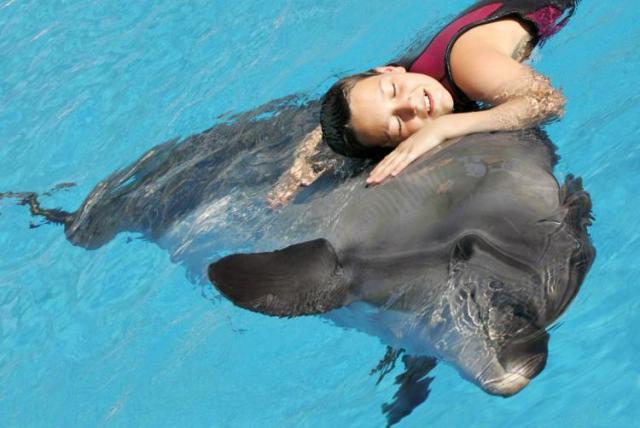 Дельфин спасает человека