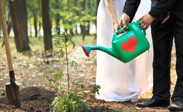 Садовый инструмент для молодоженов