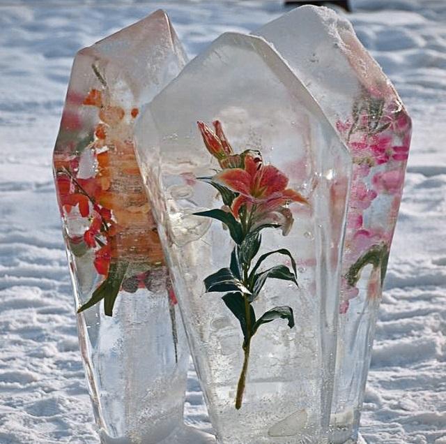 Поделки изо льда