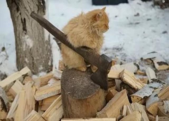 Мужик рубит дрова в ноябре