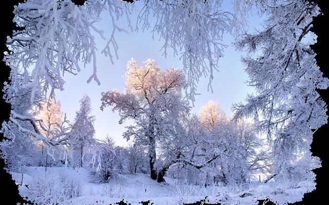 Это самый холодный месяц в году.
