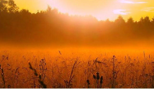 Утренняя заря