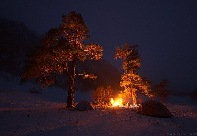 Новый год в лесу