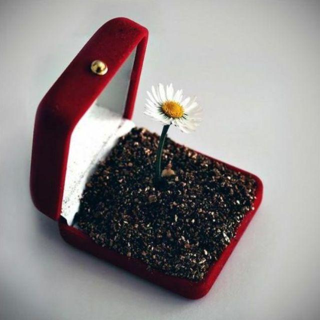 Подарок-прикол для женщины