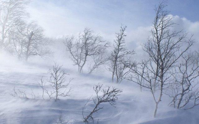 Вьюги и метели на февраль
