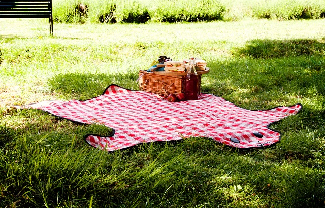 Еда на пикнике