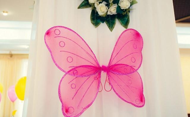 Огромные бабочки